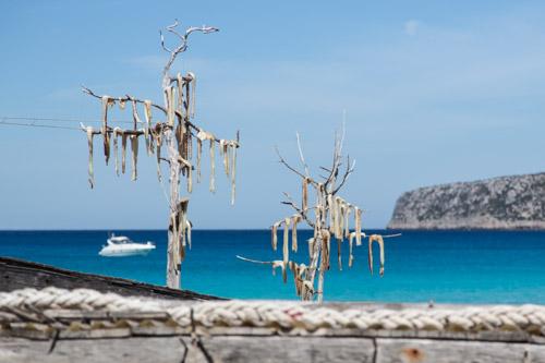 Peix sec al sol en Es Caló Formentera